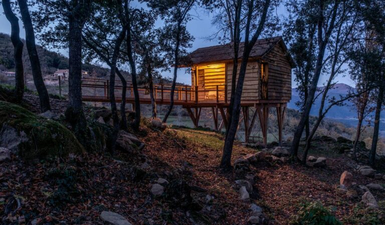 Luxury Camping Experience with Beautiful Views of Tiny House